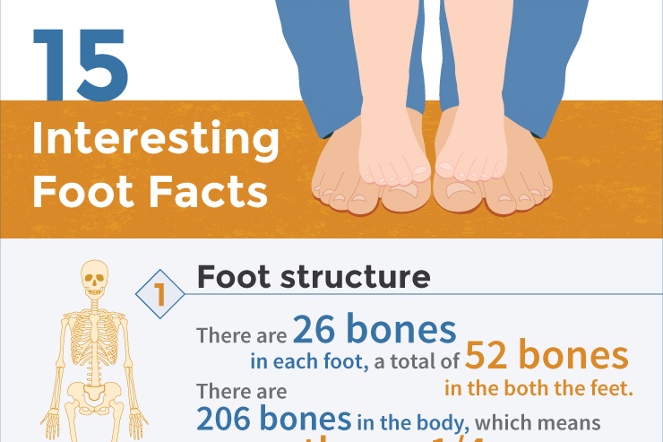 infographic 15 interesting foot facts_ft